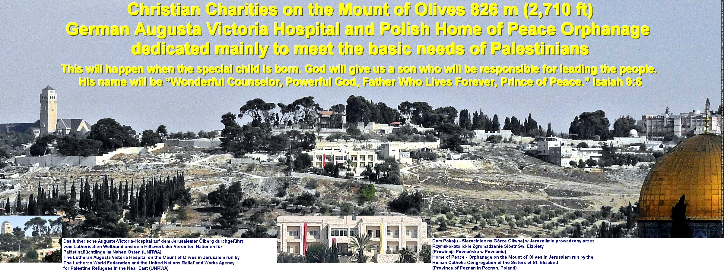 Christian Charities on the Mount of Olives 826 m (2,710 ft) German Augusta Victoria Hospital and Polish Home of Peace Orphanage dedicated mainly to meet the basic needs of Palestinians. Fine Art Photography by Zbigniew Halat Das lutherische Auguste-Victoria-Hospital auf dem Jerusalemer Ölberg durchgeführt vom Lutherischen Weltbund und dem Hilfswerk der Vereinten Nationen für Palästinaflüchtlinge im Nahen Osten (UNRWA). The Lutheran Augusta Victoria Hospital on the Mount of Olives in Jerusalem run by The Lutheran World Federation and the United Nations Relief and Works Agency for Palestine Refugees in the Near East (UNRWA). Dom Pokoju - Sierociniec na Górze Oliwnej w Jerozolimie prowadzony przez Rzymskokatolickie Zgromadzenie Sióstr Św. Elżbiety (Prowincja Poznańska w Poznaniu). Home of Peace - Orphanage on the Mount of Olives in Jerusalem run by the Roman Catholic Congregation of the Sisters of St. Elizabeth (Province of Poznan in Poznan, Poland)