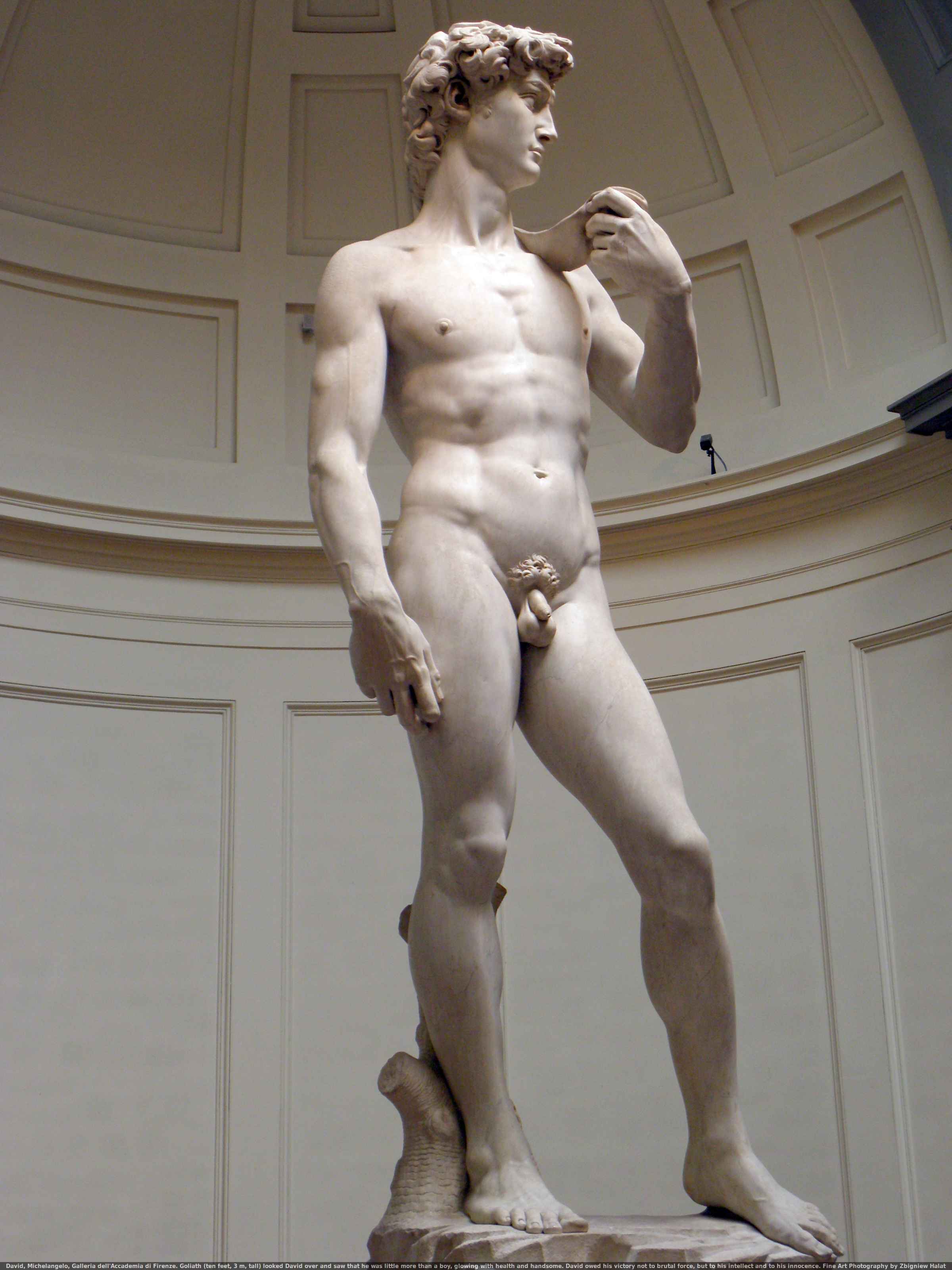 David, Michelangelo, Galleria dell'Accademia di Firenze. Goliath (10 feet, 3 m, tall) looked David over and saw that he was little more than a boy, glowing with health and handsome. David owed his victory not to brutal force, but to his intellect and to his innocence. Fine Art Photography by Zbigniew Halat